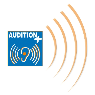 AUDITION +
