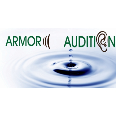 ARMOR AUDITION